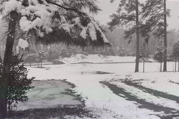The par three 12th hole at  Augusta National.