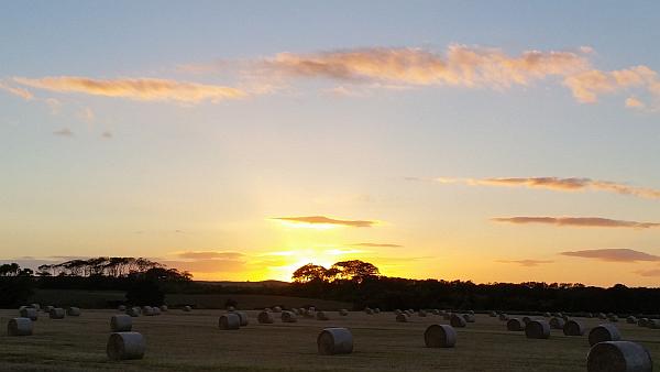 Sunset near Kingsbarns Oct 2014 (red)